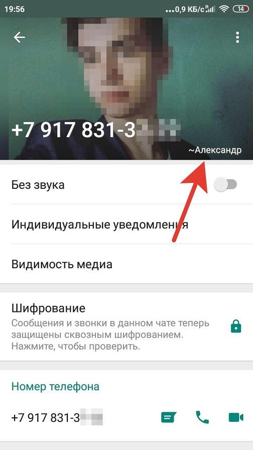 Контакт-зарегистрированный-в-WhatsApp